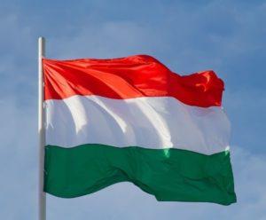 Umzug nach Ungarn stressfrei umziehen
